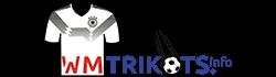 WM Trikots 2018